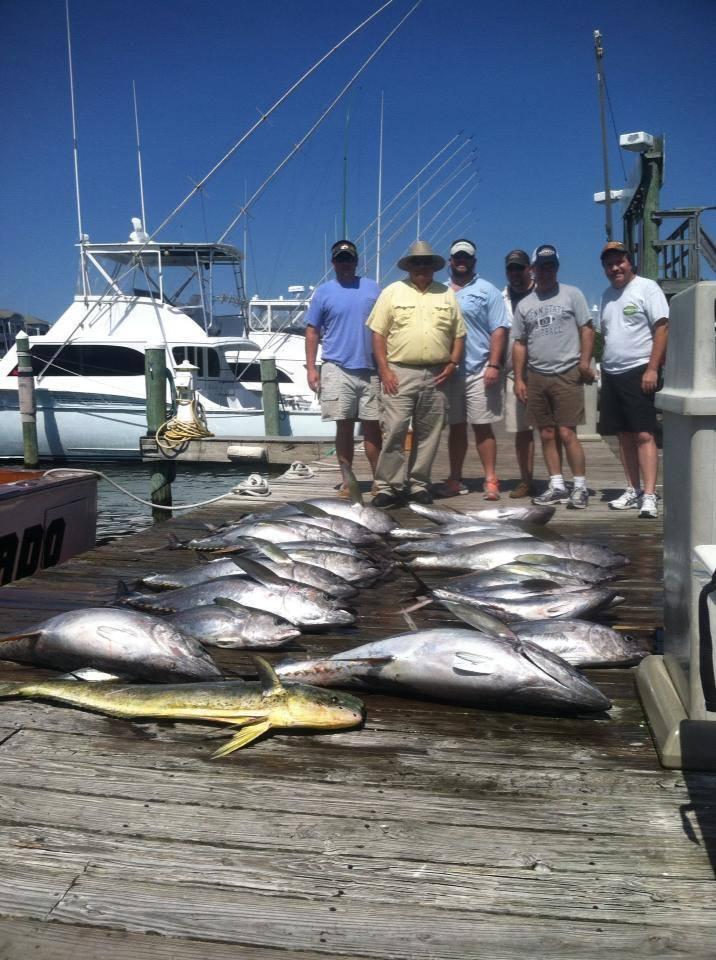 Desperado Sportfishing: Full Day Trip