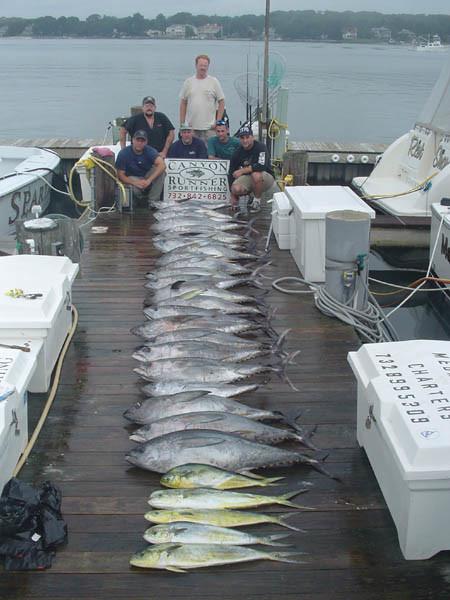 Canyon Runner Charter Boat: Wreck Fishing