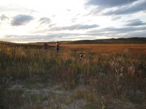Pheasant Bonanza Hunt Club: Upland Hunt 1/2 Day