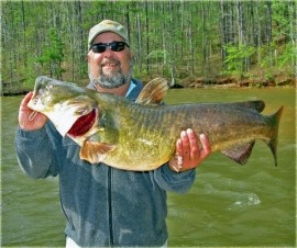 Paul Parsons Guide Service: Live Shad Trips