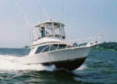 Blue Collar Man Sport Fishing: Inlet Fishing