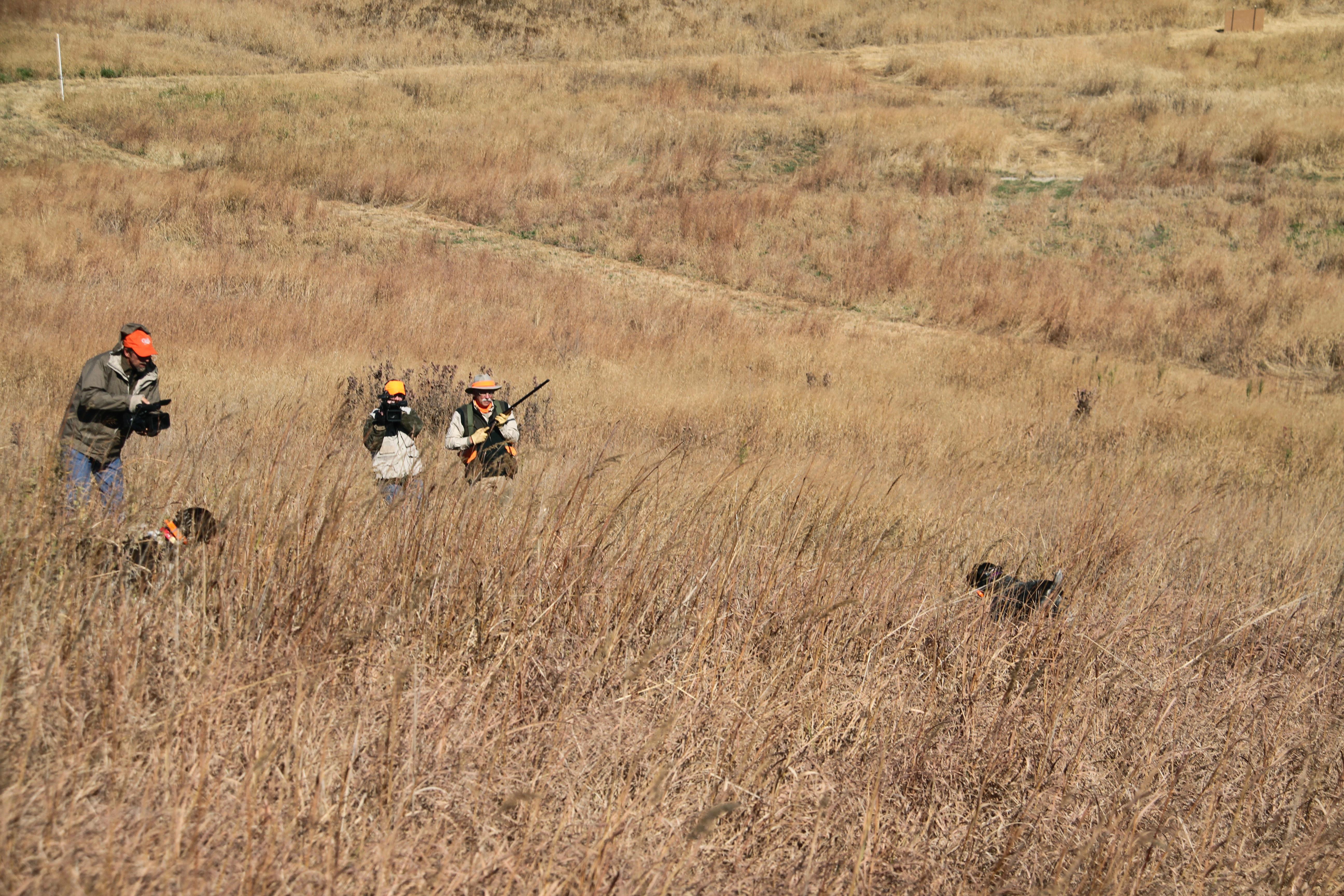 Pheasant Bonanza Hunt Club: Upland Hunt Package 2