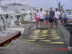 Hog Wild Sportfishing: Offshore Full Day