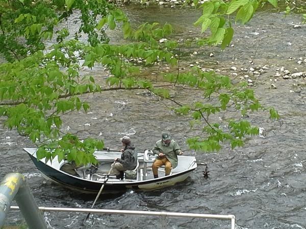 Baldheaded Bobby Guide Service: Southern Appalachian River Fishing