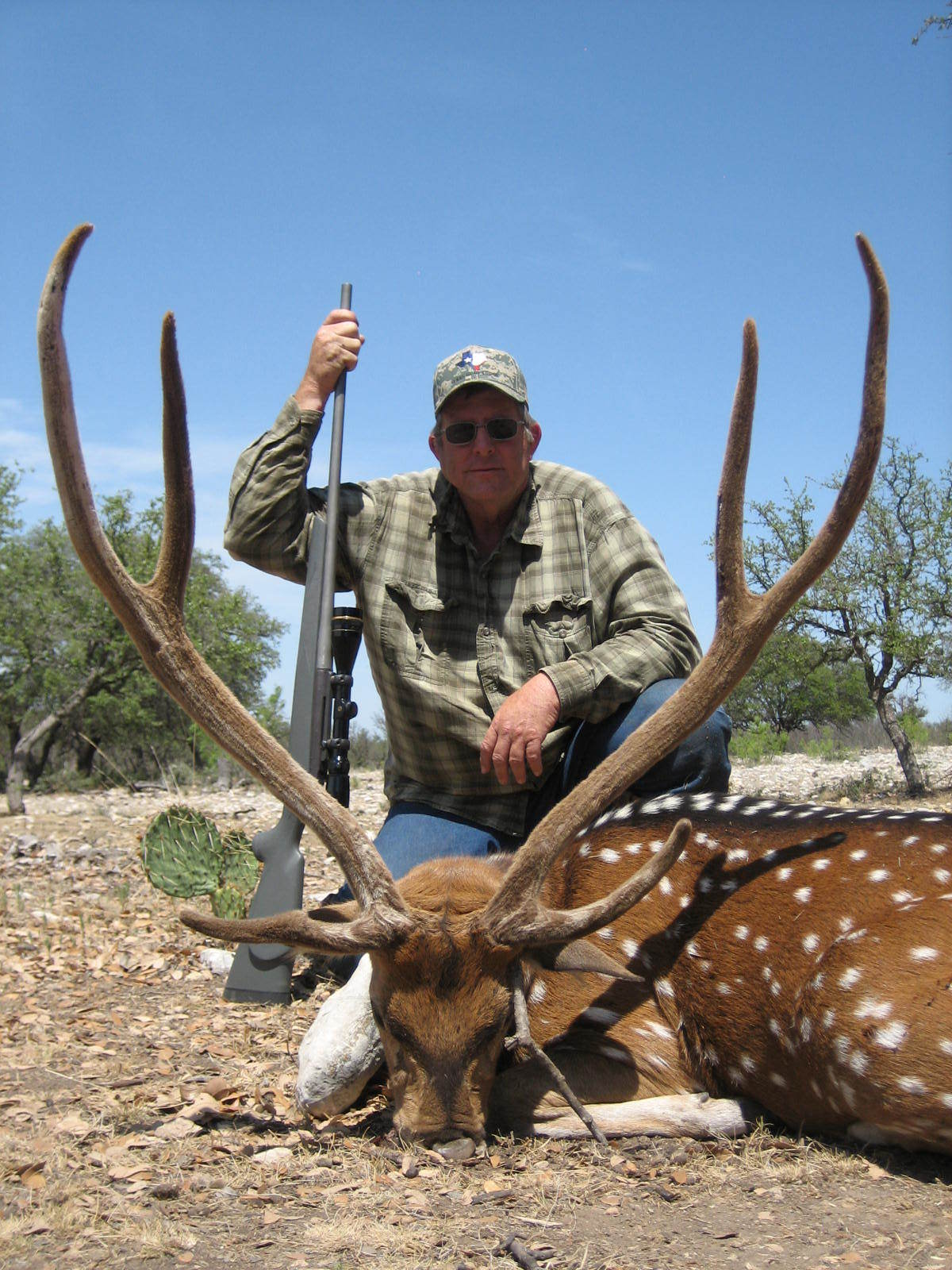 Texas Hunt Lodge: Axis Deer Hunts