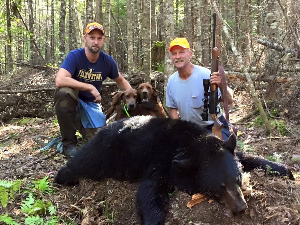 Matagamon Wilderness Camps: Hound Hunting Bear
