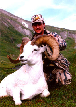 High Adventure Air Charter Guides & Outfitters: GUIDED DALL SHEEP HUNT