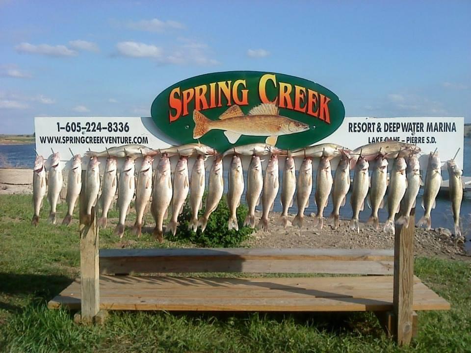 Spring Creek Resort & Deep Water Marina: Fishing & Lodging Combo