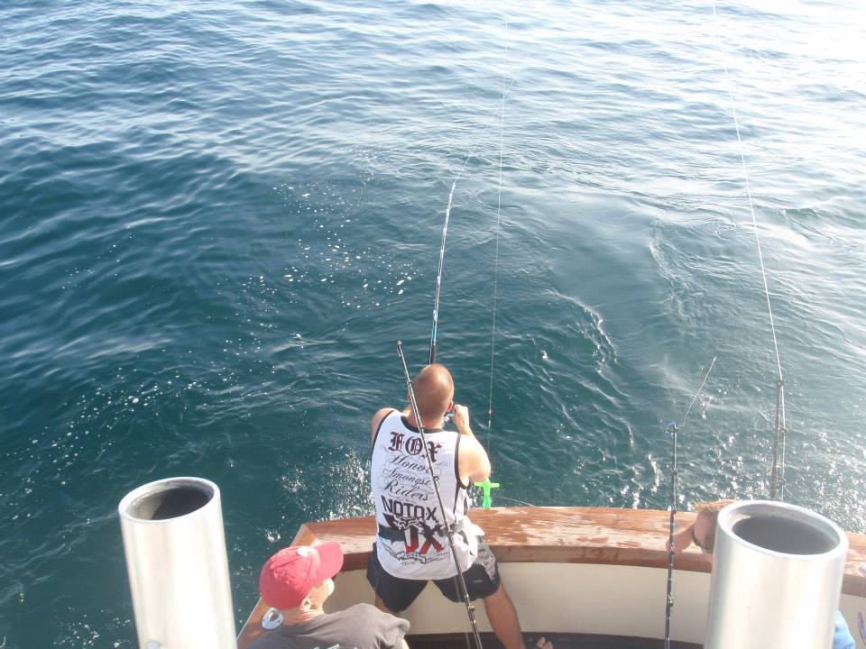Island Girl Charters: Offshore Shark Trip