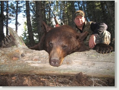 Rawhide Outfitters: Idaho Spring Bear Hunts