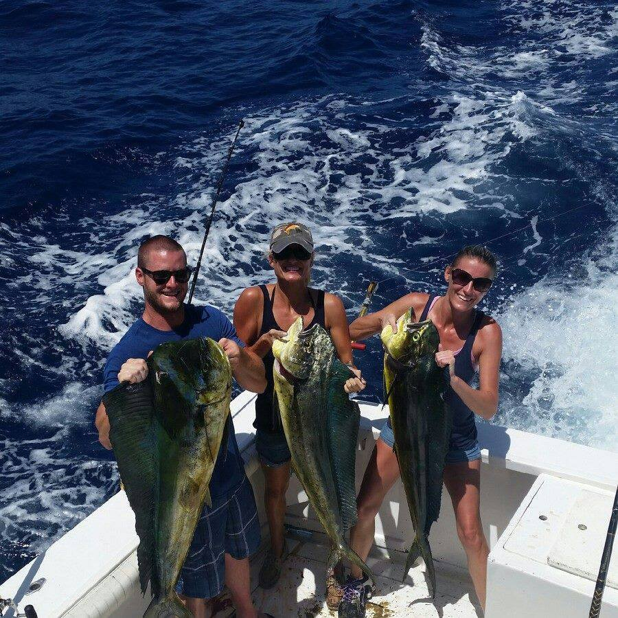 Linda D Sportfishing: Example 1/2 Day Fishing Trip