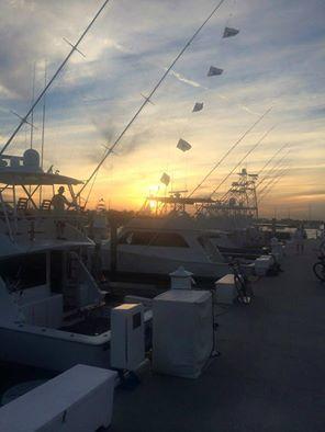 Sailfish Marina Charter Fleet: Cruise