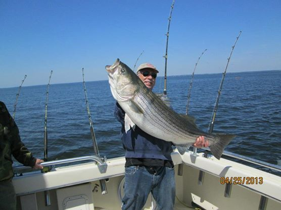 Fin Finder Fishing Charters: Fall Rockfish Trip