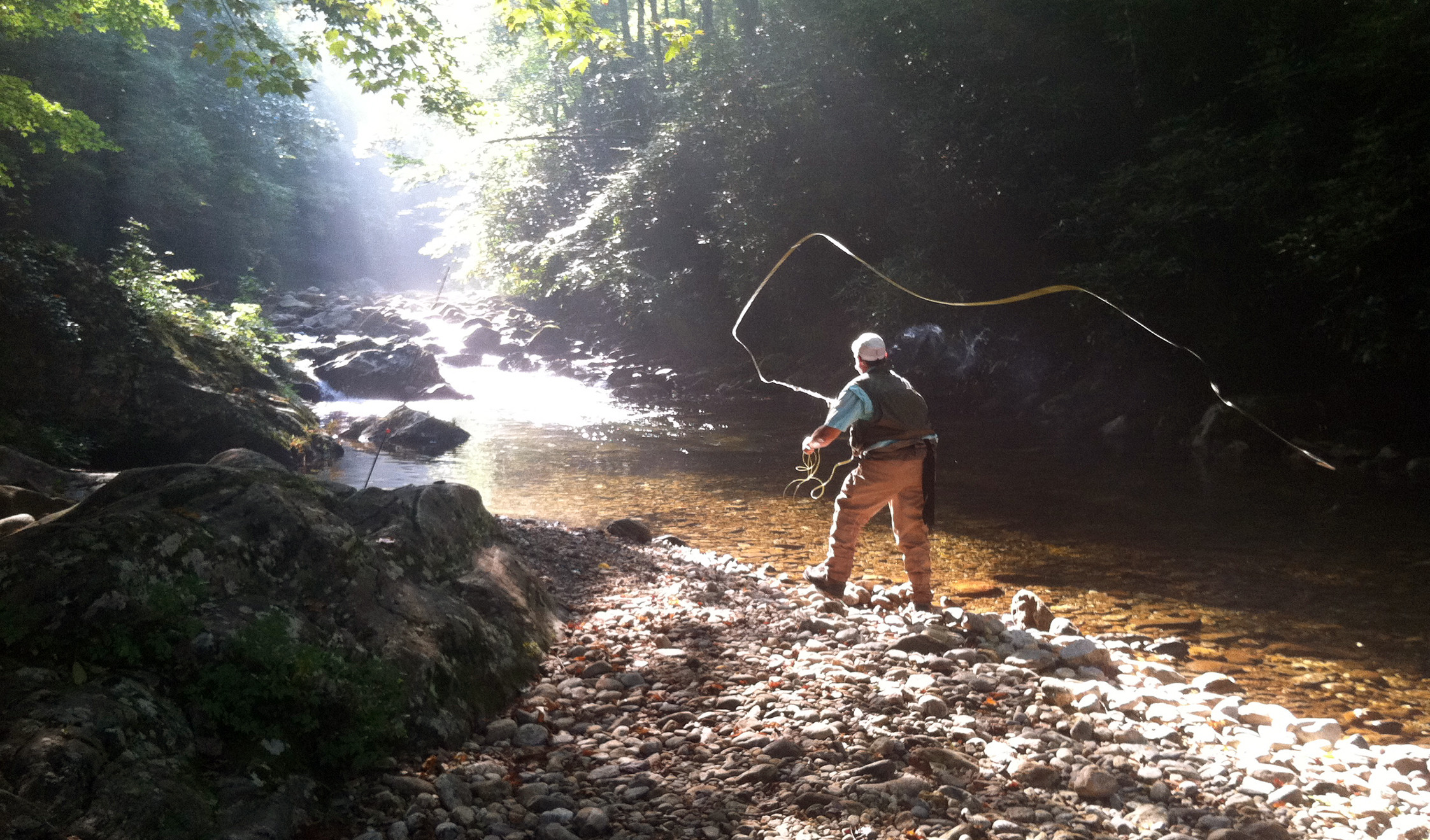 Asheville Fly Fishing Company: Full Day Wade Trip