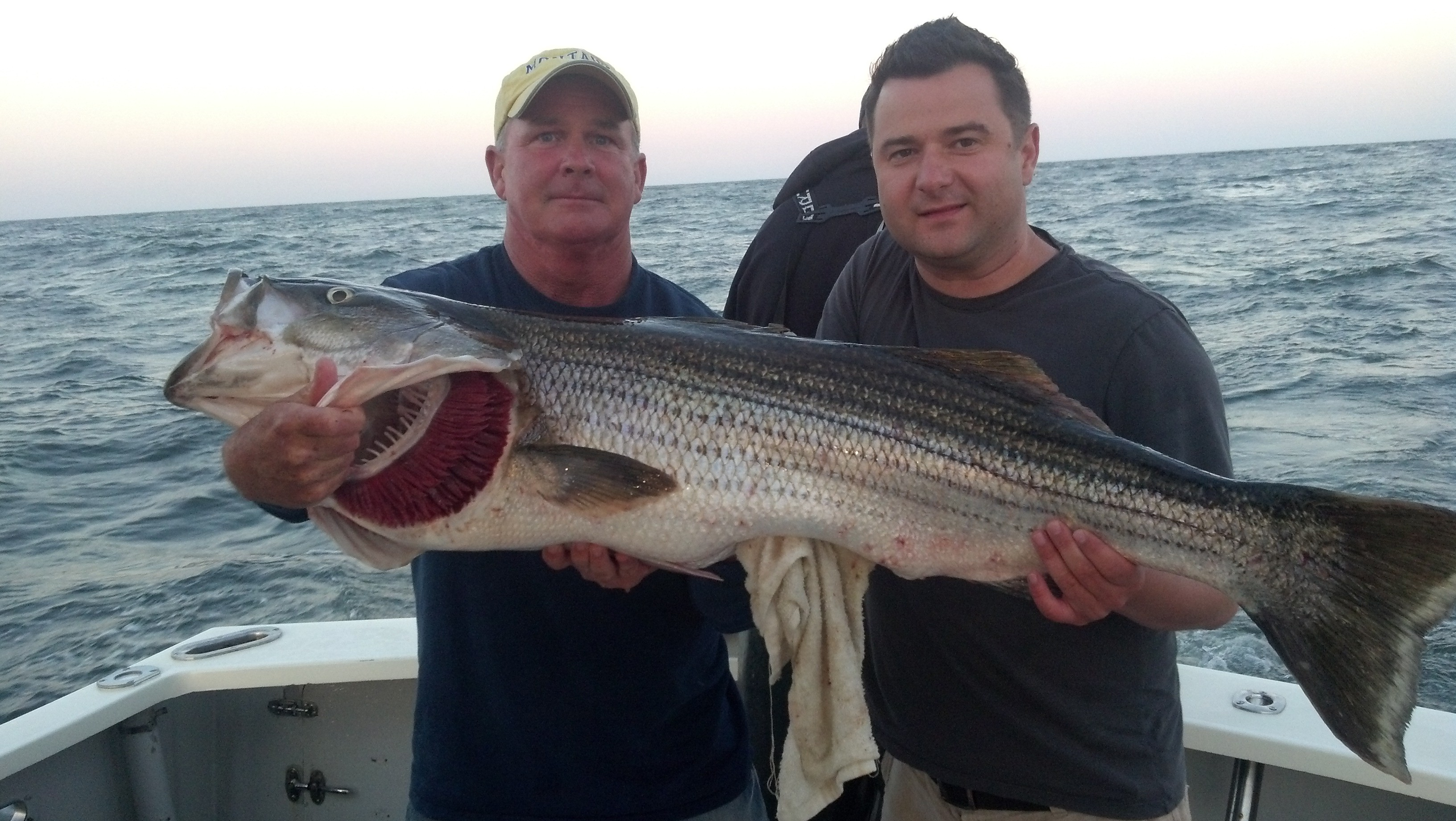 Codfather Fishing Charters: Bluefish - Weakfish - Stripers Trip