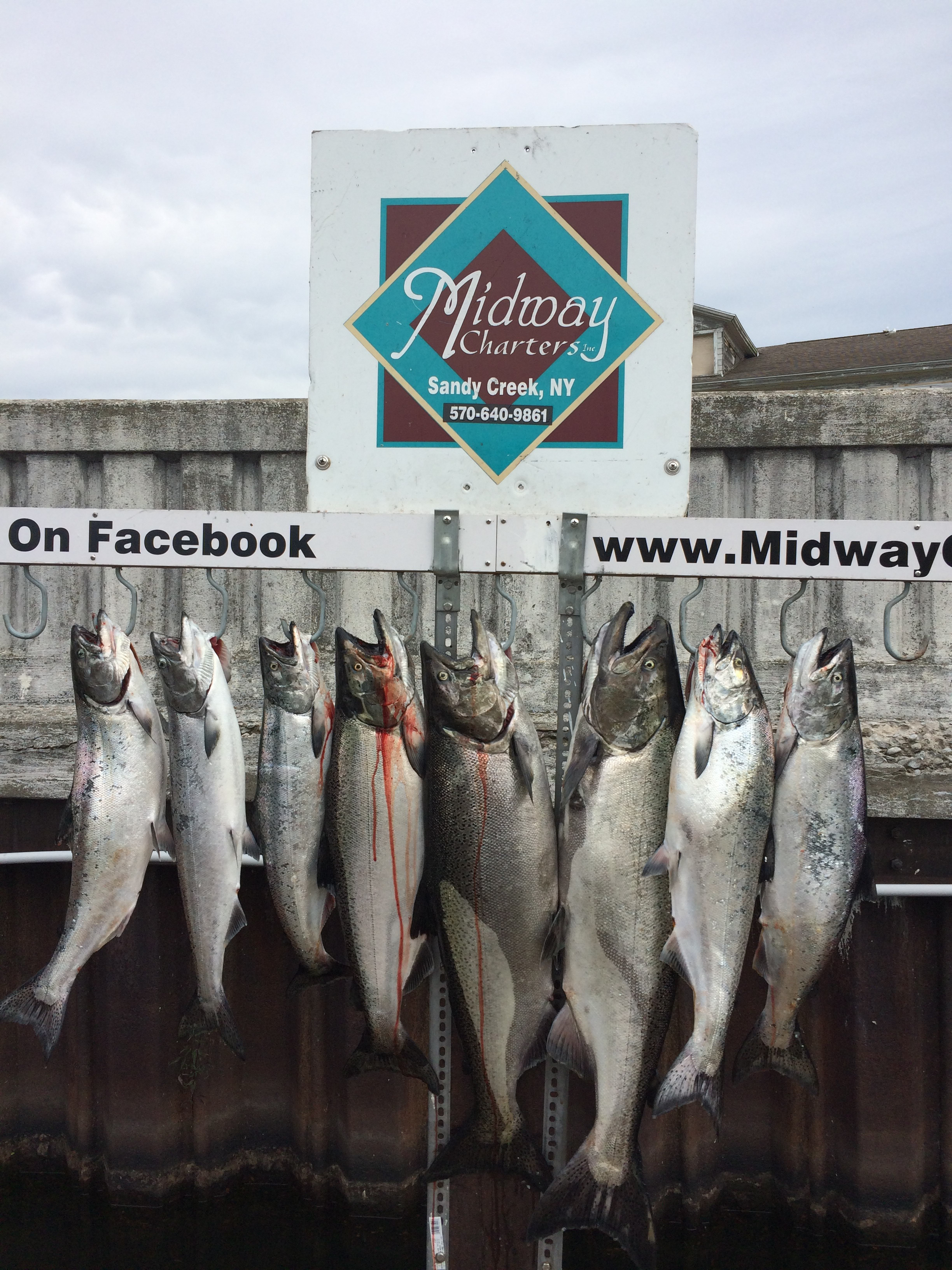 Midway Charters: 6 hour fishing trip