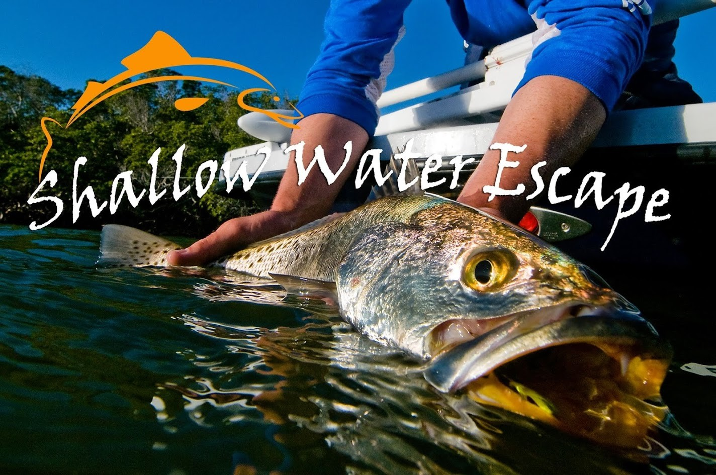 Shallow Water Escape: Half Day Inshore Fishing
