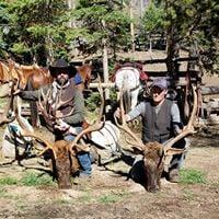 Bitterroot Outfitters: Elk Hunt