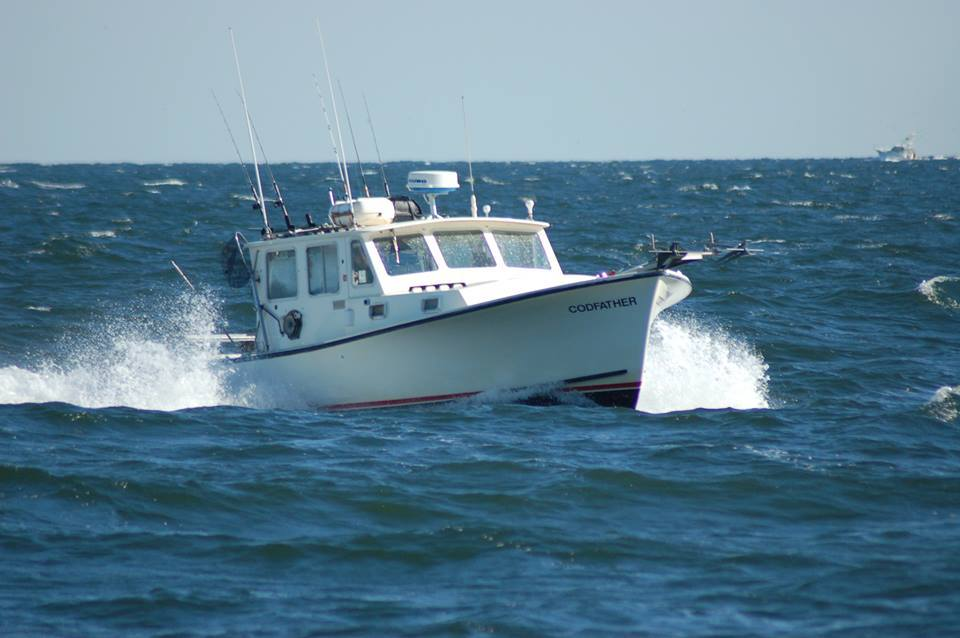 Codfather Fishing Charters: Flounder Fishing