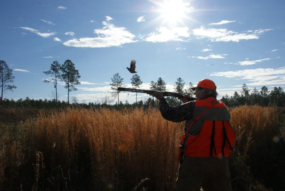 Southern Legends Plantation: Quail Hunts