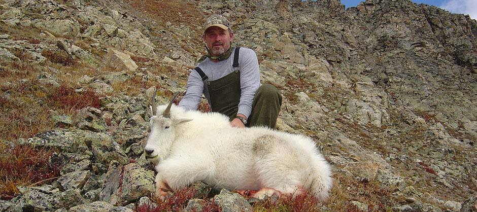 Aei Guide And Outfitter: TROPHY MOUNTAIN GOAT HUNT
