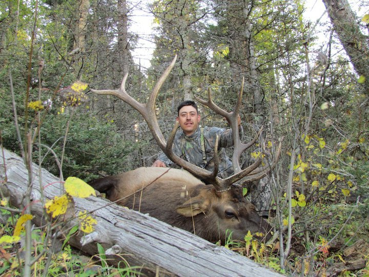 Sierra Blanca Outfitters: Elk Hunt