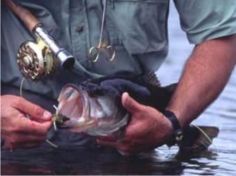 Sandy Oaks Ranch: Fly Fishing Casting Lesson