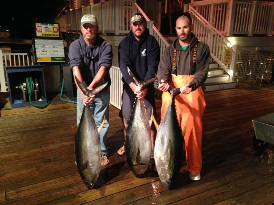 Husevo Offshore Sport Fishing: Ocean City,  MD Overnight