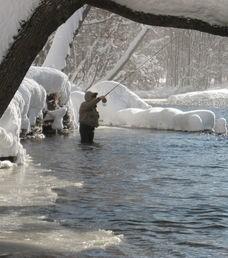 The Douglaston Salmon Run: Fall 3 Full Day M-Thursday