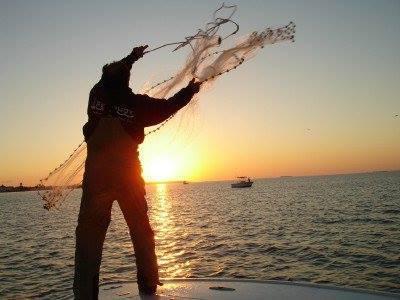 Fin Nagle Fishing Charters: 3/4 Day Fishing Trip