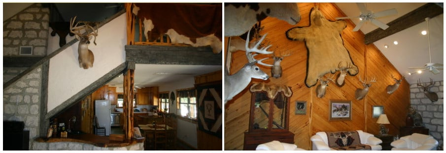 White Ghost Ranch: Select Does