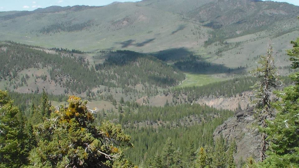 Sage N Pine Guide & Outfitters: Photography, Trail Rides & Pack Trips (3 days/2 nights)