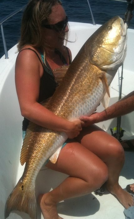 Fishy Bizness: Full Day Charters