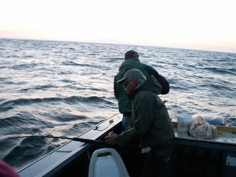 Wildrose Charters And Cabins: Kenai River King Salmon Trip