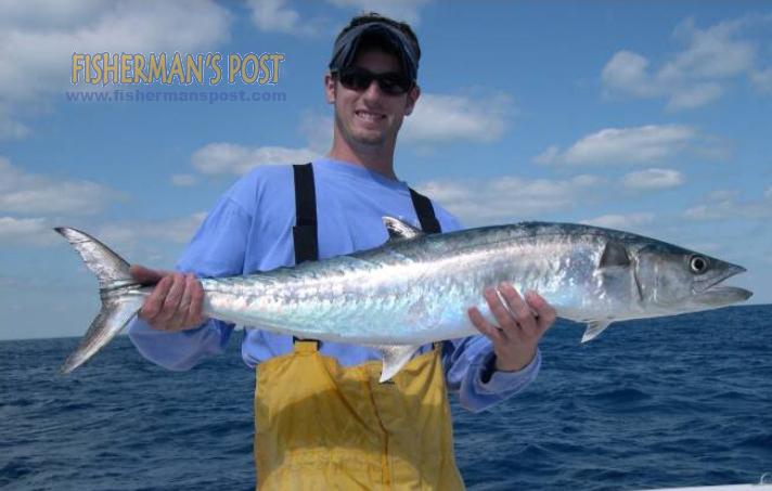 Ocean Stinger Fishing Charters: Offshore Trips
