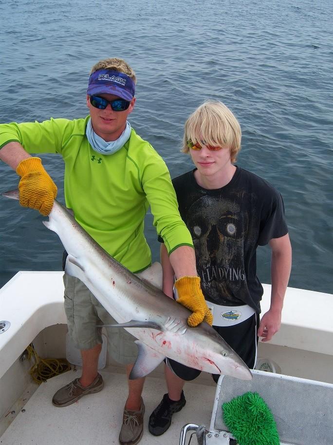 Over Board Sportfishing Charters: near coastal shark