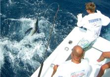 Tighten Up: Shark Fishing Trip