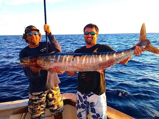 Southernmost Sportfishing: Example Half Day Trip