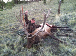 Loco Mountain Outfitters: Archery Elk Hunt