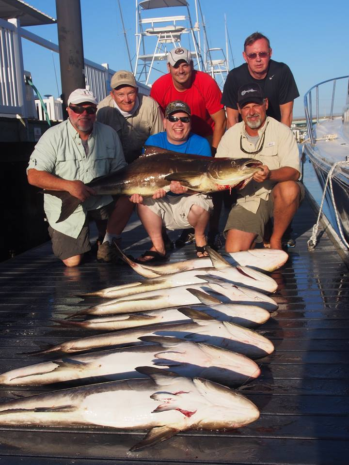 Fin Finder Fishing Charters: Bay Bottom Fishing