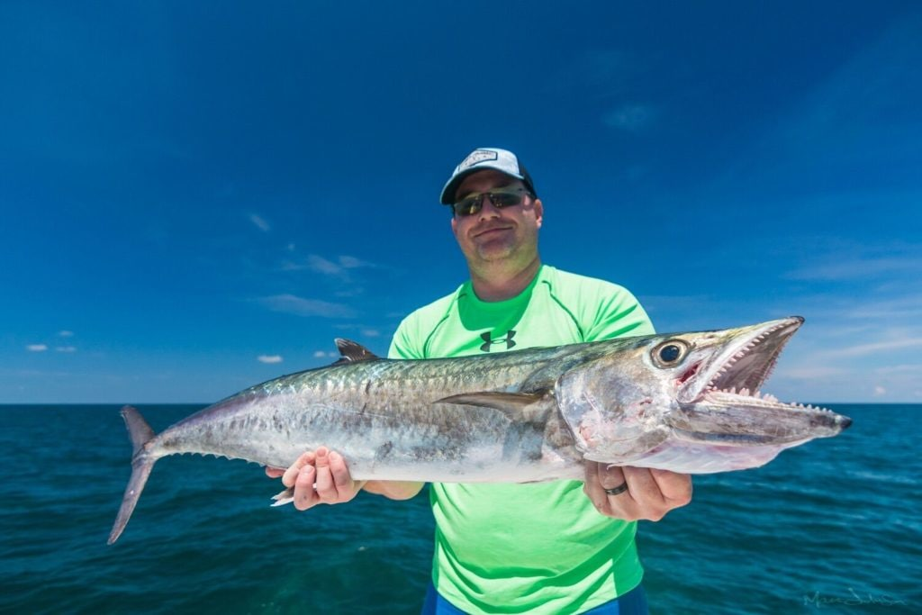 Endless Summer Charters, Inc.: Offshore Wreck/Reef Fishing