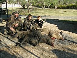 Dawson Whitetail Ranch: Texas Hog Hunt