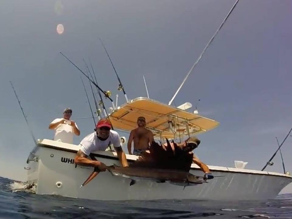 Brassy Hooker Sport Fishing: Offshore Trip