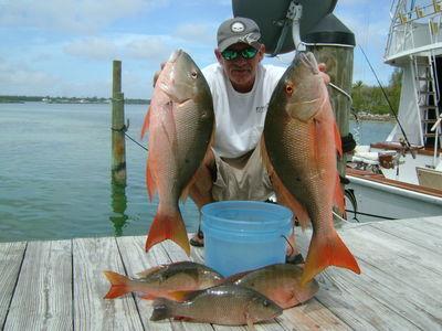 Big Easy Sportfishing Charter: Half Day Trip