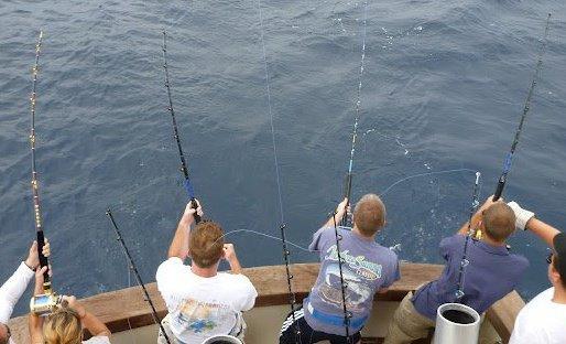 Island Girl Charters: Inshore Fishing Trip