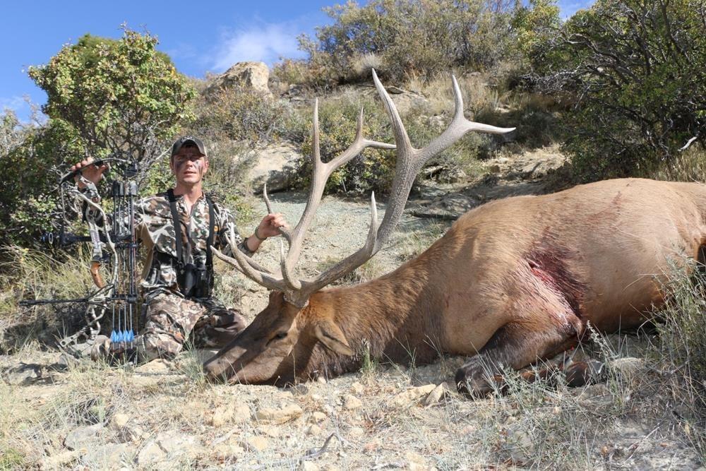 Bearpaw Outfitters: Idaho Elk and Mule Deer Hunts
