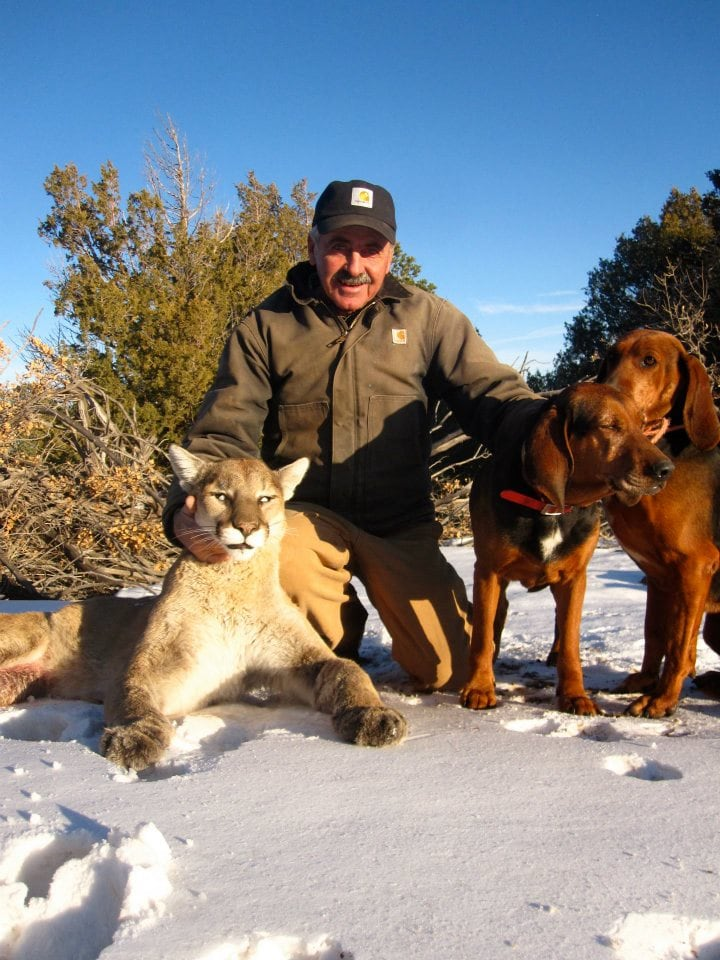 New Mexico Trophy Hunt : Mountain Lion Hunt
