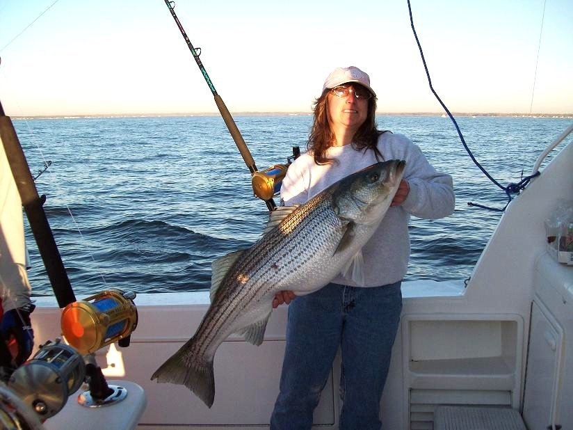 Bill 4 Bills Sportfishing: Chesapeake Bay Full Day