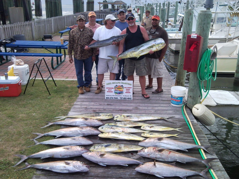 Four Reel Sport Fishing Charters: Example 1/2 Day Fishing Trip