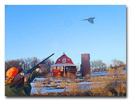 Hugg Inn: Pheasant Hunts
